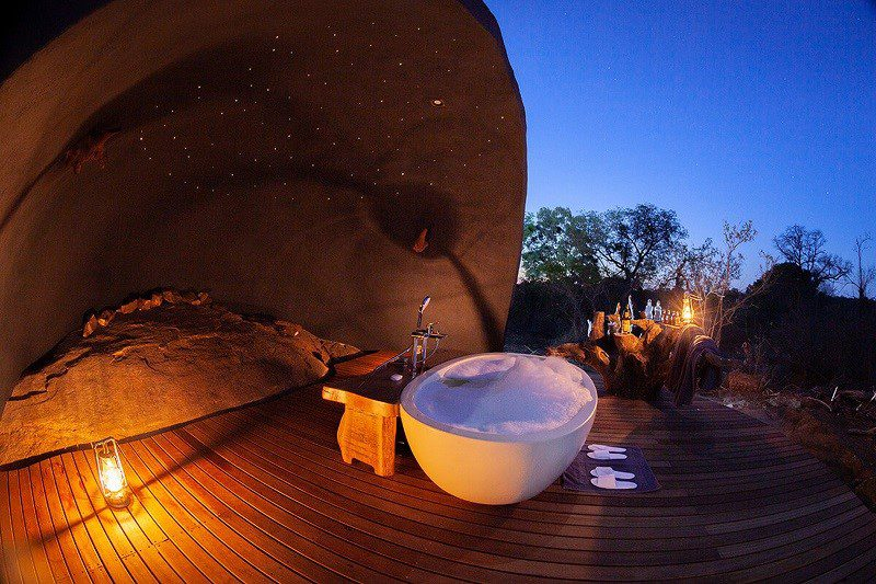 3 Exclusive Safari Experiences That Promote Well-being