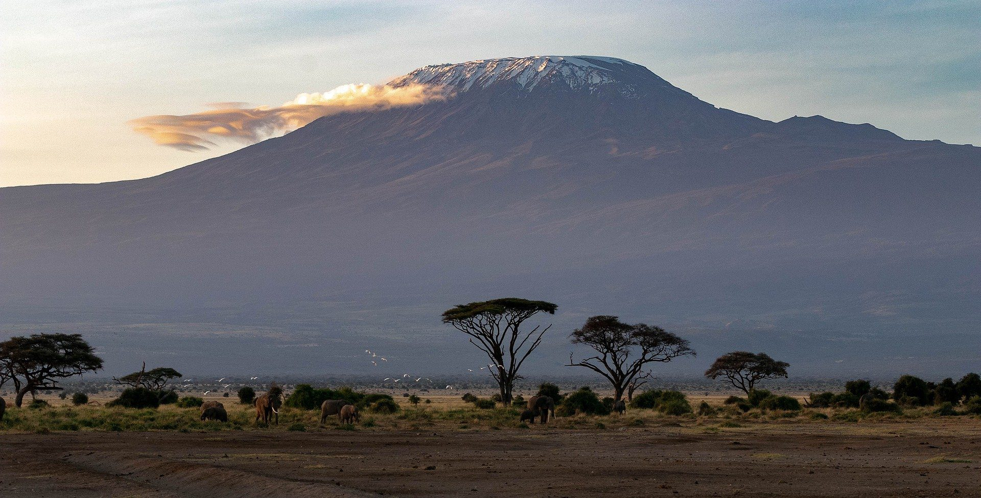 12 beautiful national parks in tanzania